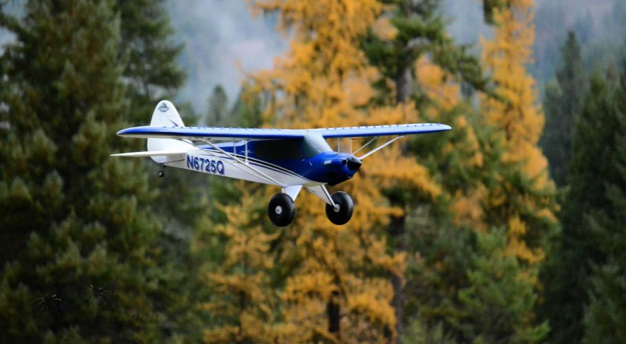 E-flite Carbon-Z Cub in Flight